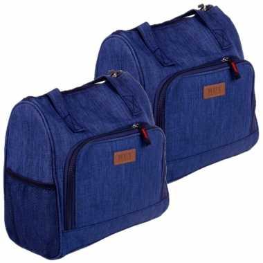 Set van 2x stuks kleine koeltassen voor lunch blauw 25 x 12 x 26 cm 8 liter