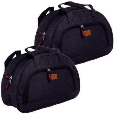 Set van 2x stuks kleine koeltassen voor lunch zwart 32 x 12 x 21 cm 8 liter