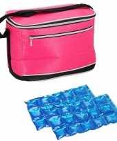 Kleine koeltas voor lunch fuchsia roze met 2 stuks flexibele koelelementen 8 liter